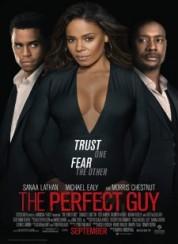 Mükemmel Bir Adam — The Perfect Guy 2015 Türkçe Dublaj 1080p Full HD İzle