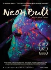 Neon Boğa Neon Bull